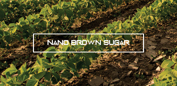 Nano Brown Sugar